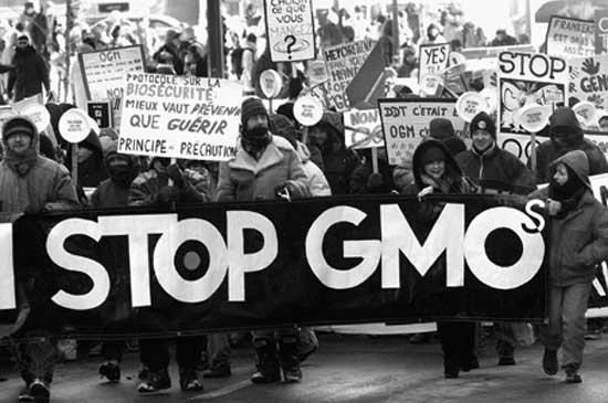GMO protestors