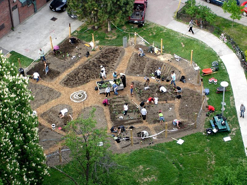 Community garden - Social initiative - The Labyrinth of Life - Stefanos Sifandos